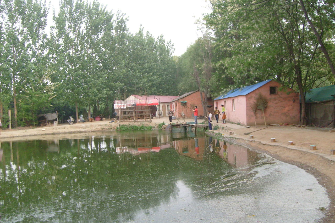 郑州景点之森林公园图片